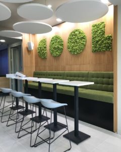 XYLON   Dizajn enterijera i nameštaja   Coca Cola kancelarije